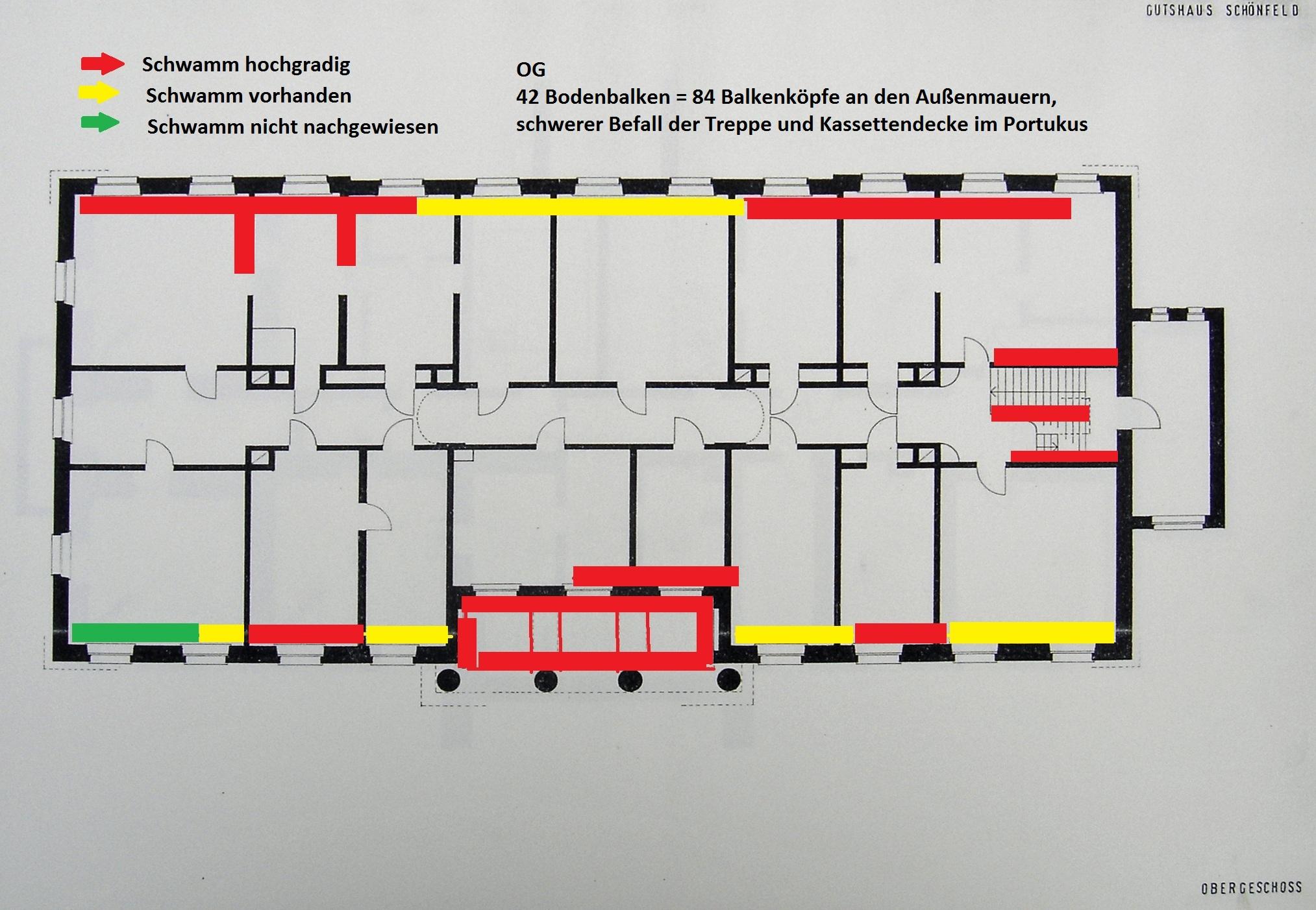Sanierung des Herrenhauses in Schönfeld: Kataster des Schwammbefalls im OG