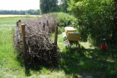 Bienenhaltung in Schönfeld
