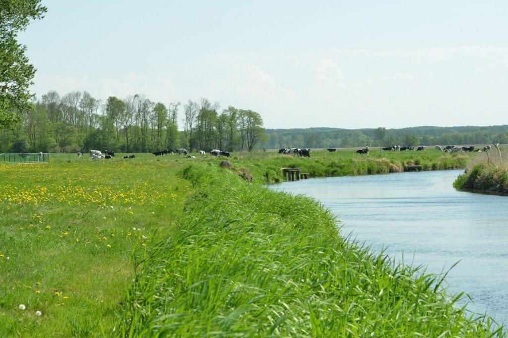 Landschaft MV Vanselow